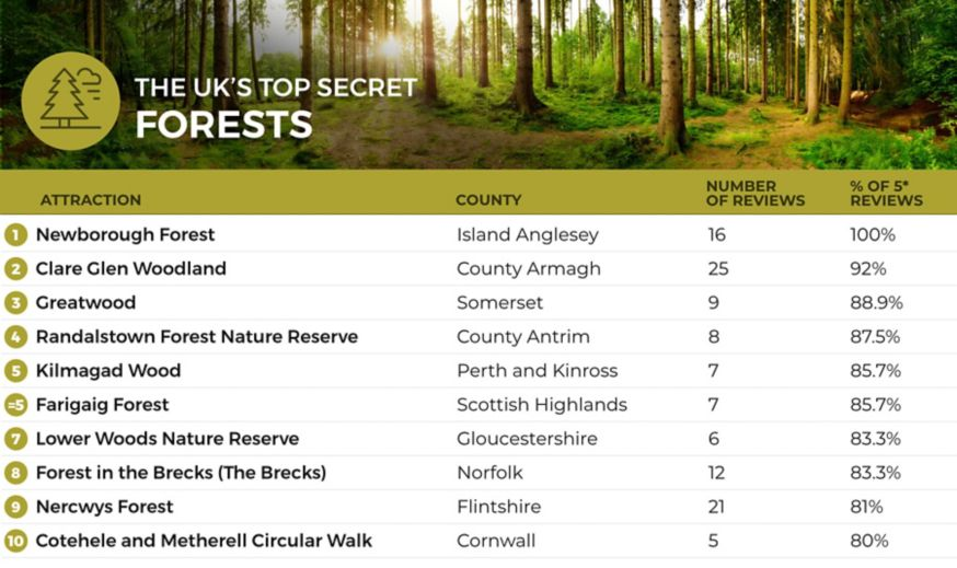 A list of the top 10 most hidden forests in the UK