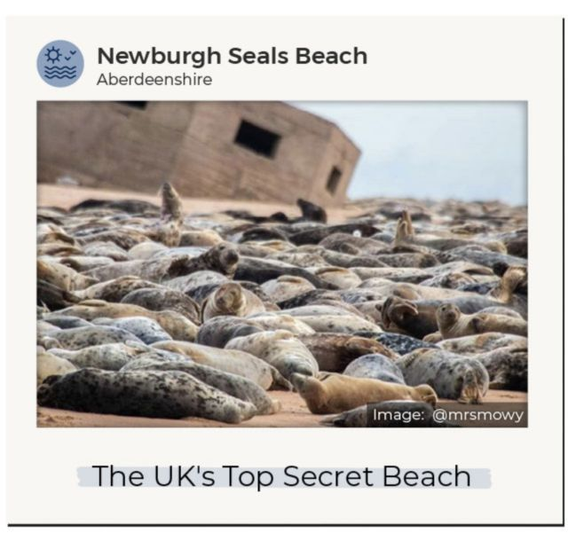 An Instagram image of Newburgh Seals Beach in Aberdeenshire